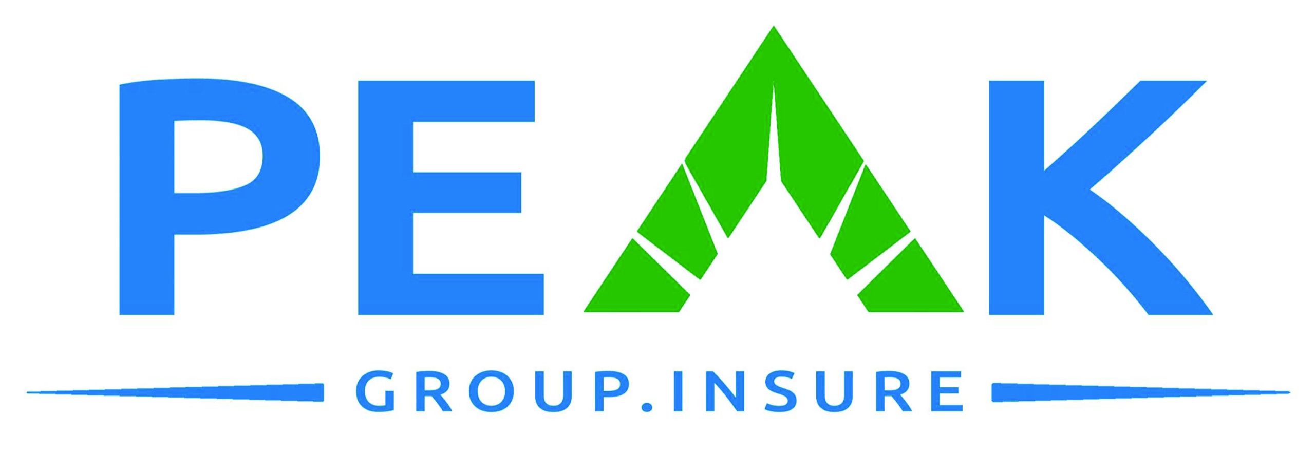 Peak Group Logo